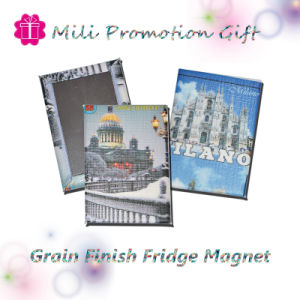 New Hot Promotion Tinplate Fridge Manget pictures & photos