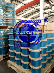 Stainless Steel Wire Rope Vinyl (PVC) and Nylon Coated pictures & photos