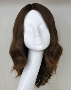 100% Handtied Curly Hair Human Hair Wig PPG-Y-00001 pictures & photos