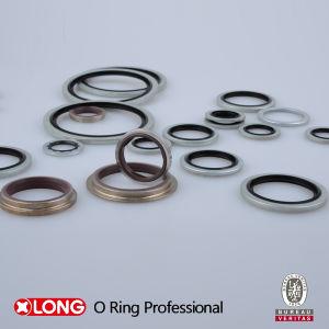 Flexible Rubber Plus Metal NBR/FKM/EPDM Bonded Seal pictures & photos