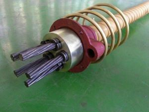 Prestressed Anchorage Coupler for Prestressed Concrete pictures & photos
