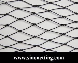 Building Bird Netting Treated with UV Plastic Manufacturer in South of China