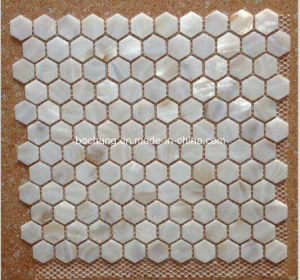 Mother of Pearl Shell Mosaic pictures & photos