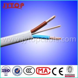 300/500V PVC Insulated Flat Cable with Ce Certificate pictures & photos
