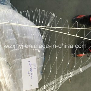 0.41mm X 100md X 69.9 Mmst Nolon Monofilament Fishing Net pictures & photos