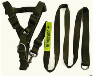 Wholesale Adjustable Peted Leather Dog Training Collar pictures & photos