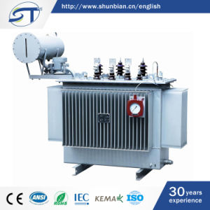 11kv 33kv High Voltage Step up Oil Immersed Power Transformer pictures & photos