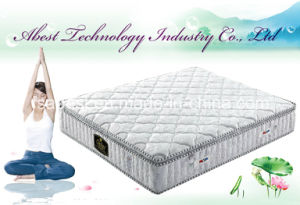 Pillow Top Memory Foam Mattress Topper ABS-2919 pictures & photos