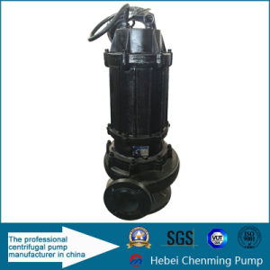 Electric Vertical Supply Discharge Ash Transfer Sewage Water Pump pictures & photos