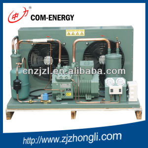 Bitzer Condensing Unit Selling by Factory with Best Price pictures & photos
