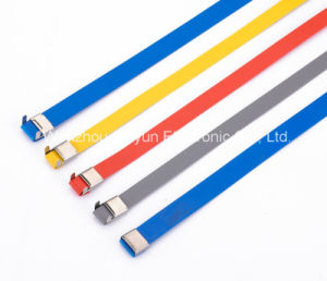 O Lock Type Plastic Covered Stainless Steel Cable Ties 12X550mm pictures & photos