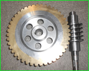 High Quality Worm Gear in Industry