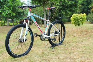 Dbx New Fashion Adult Vanquish Aluminum Alloy Bike pictures & photos