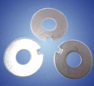 Stainless Steel Internal Tab Washers DIN 462 pictures & photos