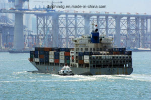 Shipping Forwarder: FCL Ocean Logistics From China to Semarang