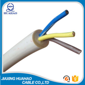 H05VV-F Copper Conductor PVC Insulated Flexible Cable (2X6.0mm2 2X10.0mm2) pictures & photos