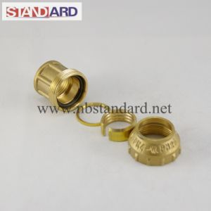 Brass Fitting of PE Female Coupling