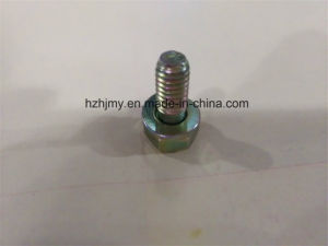 06.01913-2911 Dl06 Cam Shaft Gear Retaining Screw pictures & photos