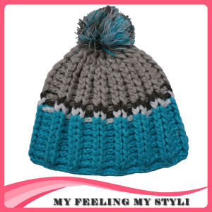 Warmful Beanie Hat with Reliable Price pictures & photos