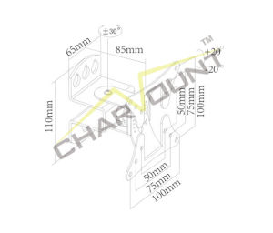 Special Economy Pivoting TV Wall Mount (CT-LCD-T101V) pictures & photos