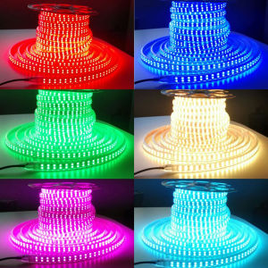 Double Row LED Strip Light RGB Outdoor LED Ribbon 110V/220V pictures & photos