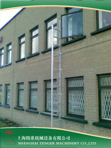 Fixed Fire Escape Ladder (TGR-FEL) pictures & photos