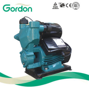 Domestic Electric Copper Wire Self-Priming Auto Pump with Power Cable pictures & photos