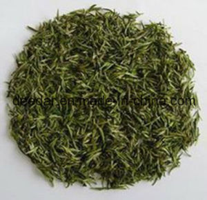 Mountain Organic Green Tea pictures & photos