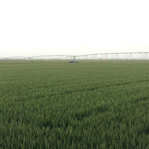 Electric Center Pivot Irrigation System/Lateral Move Linear Agricultural Sprinkler Irrigation pictures & photos