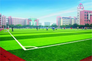 12000dtex 50mm Artificial Turf for Football (Y50) pictures & photos