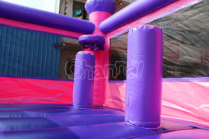 Pink Inflatable Bouncy Castle with Slide Chb573 pictures & photos