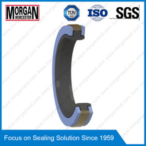 Spgw/Phd/Y3/L27/Cst Type Hydraulic Cylinder Piston Seal pictures & photos