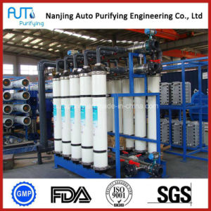 EDI Ultrapure Prodcution Water Treatment Plant
