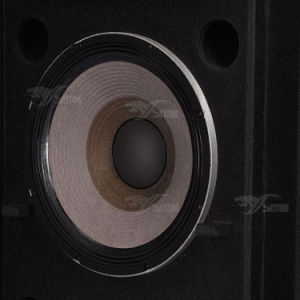 "Srx725 Dual 15"" PRO Audio Speaker Box pictures & photos"