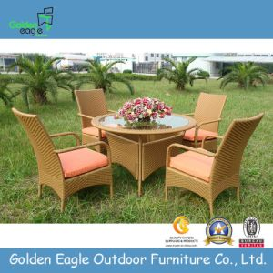 Rattan Garden Furniture Chair and Table Fp0020