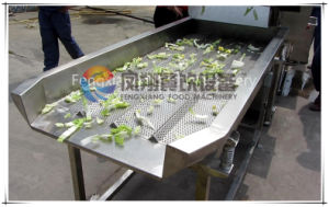 FT-1800 Vegetable Vibration Dewatering Machine / Spin Dryer Conveyor pictures & photos