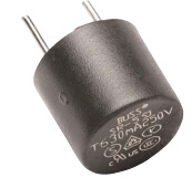 Subminiature Radial Leaded Time-Delay Fuse Sr-5-1.25A-Ap Electronic Component pictures & photos