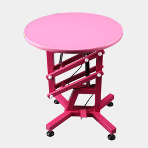 Quality Brand Pet Grooming Table Adjustable Pneumatic Beauty Tool pictures & photos