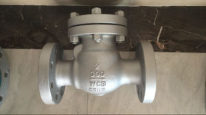 API/ASME/ANSI Carbon Steel /Cast Steel/Wcb Stainless Steel 150lb-1500lb Swing Check Valve, Flanged Ends pictures & photos
