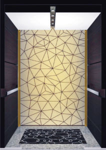 Fujizy High Quality and Safety Home Elevator pictures & photos