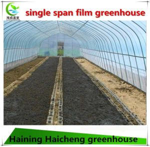 Economic and Practical Vegetable Plastic Greenhouse pictures & photos