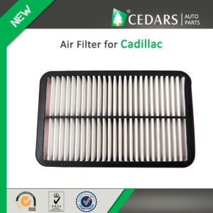 China Auto Parts Quality Supplier Air Filter for Cadillac pictures & photos