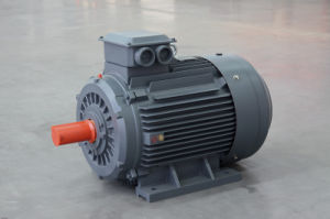 Ye2-H Series High Efficiency Sealing-in Marine Motor pictures & photos