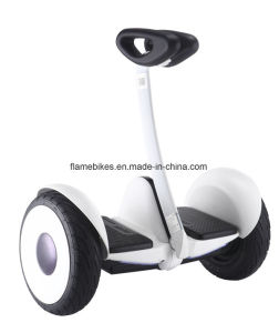 Two Wheels Electric Self Balance Scooter with 36V/4.4ah Lithuim. pictures & photos