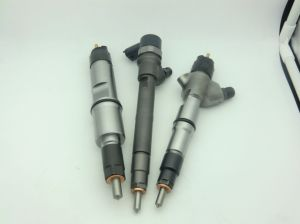 Mwm Common Rail Injector 0445110494 Erikc 0 445 110 494 Injector Assy Fuel CRI pictures & photos