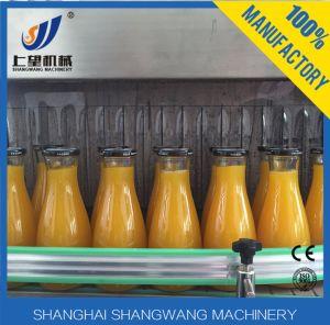 Complete 1t/H Fruit Juice Production Line pictures & photos