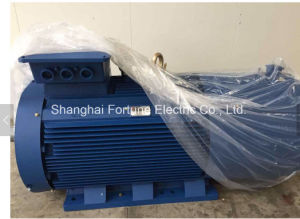 Three Phase Electric Induction Motor pictures & photos