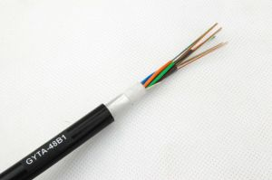 Moisture-Proof Aluminium Tape 48core Fiber Optic Cable GYTA pictures & photos