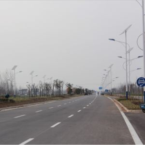 Prices of 7m 48W Solar Street Light with Lithium Battery pictures & photos