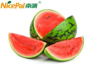 Natural Spray Dried Watermelon Fruit Juice Powder pictures & photos